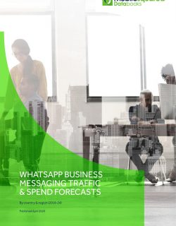 WhatsApp Business Messaging Forecasts Report_CLIENT-1